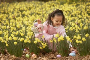 Young Hispanic girl hunting for Easter eggs outdoors