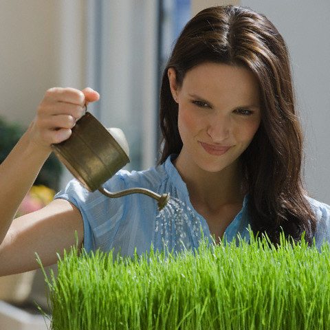 Woman watering grass