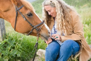 Woman giving horse a treat