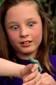 Caterpillar Crawling on Surprised Girl's Hand