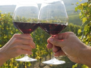 Italy, Piedmont, Barolo, Couple toasting with wine glasses in vineyard