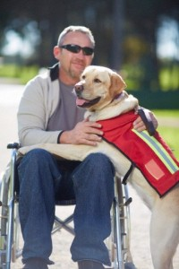 Man in wheelchair with dog in park