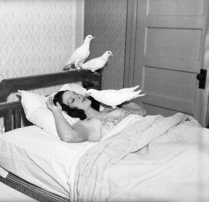 Doves Perch on Sleeping Woman
